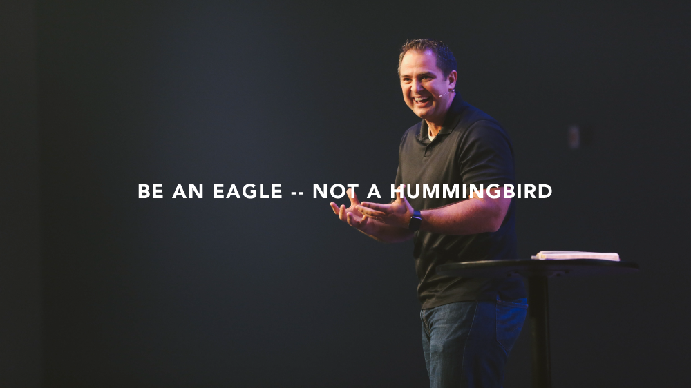 Part 2 // Be an Eagle - Not a Hummingbird Image