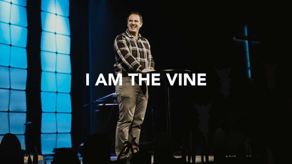 I Am The Vine Image