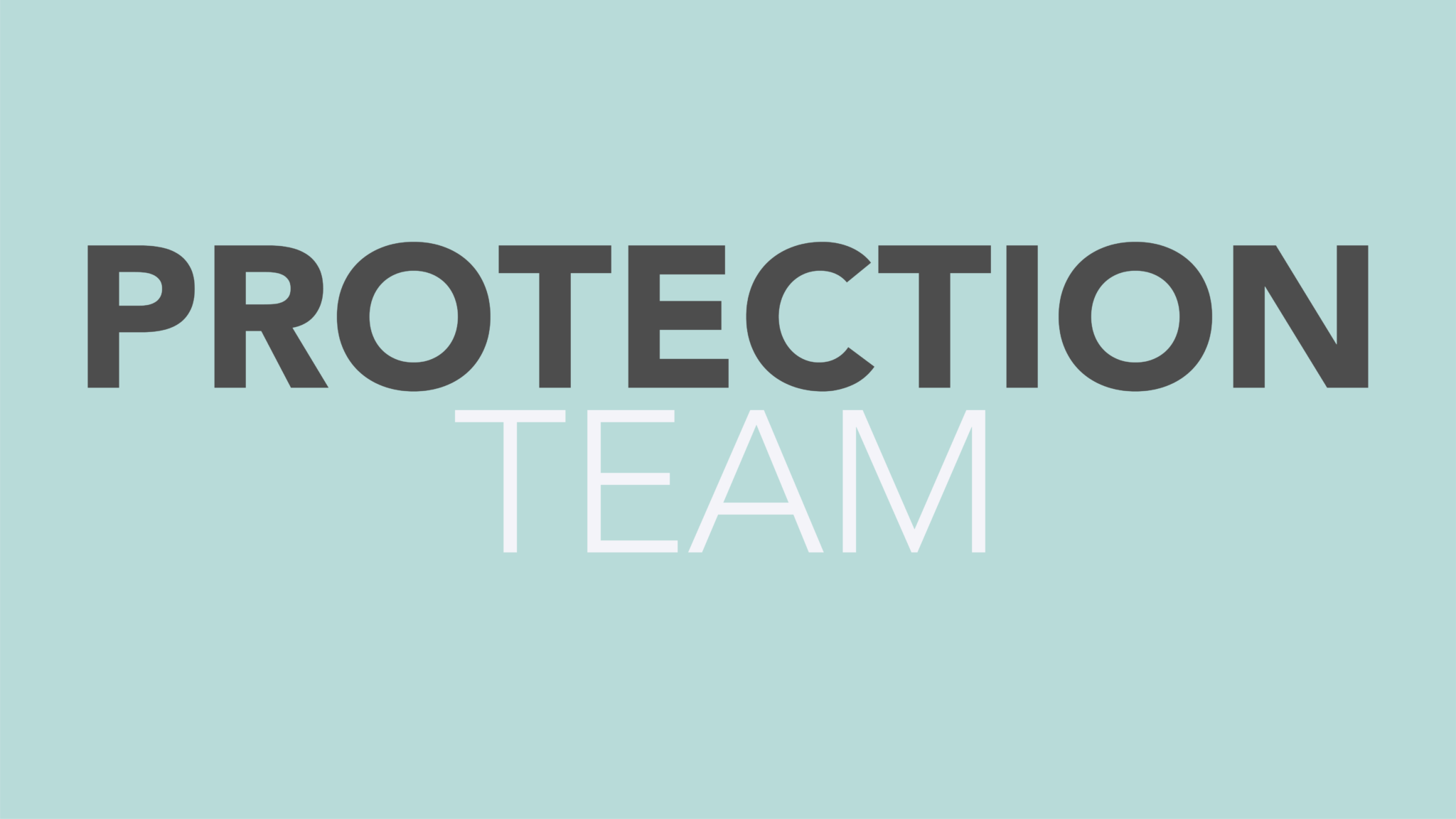 Protection Team